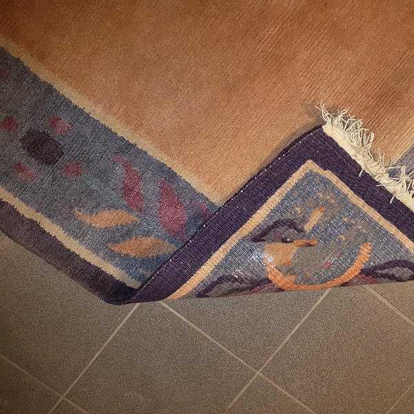 1261 domicil sensa teppich nepal randeinfassung lila lachs hell schlicht wolle handgeknuepft muenster